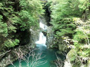 神奈川,管釣り,