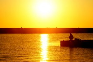 恵山漁港 釣り