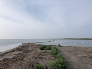 風蓮湖 釣り