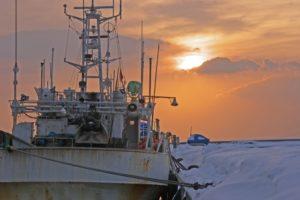 抜海漁港 釣り