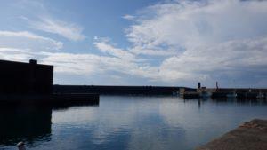 西稚内漁港 釣り