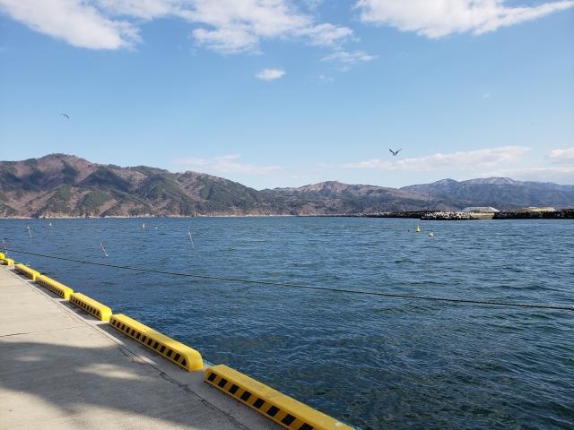 小石浜漁港のおススメ釣りポイント