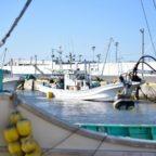 四倉漁港のおススメ釣りポイント