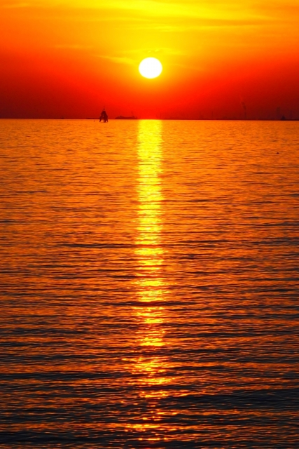 館山夕日桟橋のおススメ釣りポイント