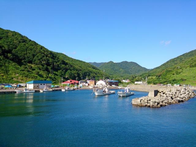 新井崎漁港のおすすめ釣りポイント