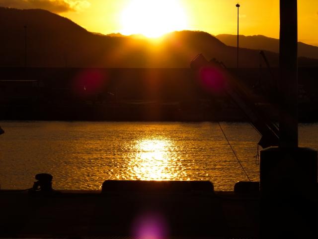 田井漁港のおすすめ釣りポイント
